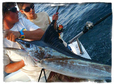 Fishing charters for hollywood south florida no vacansea for Hollywood florida fishing charters